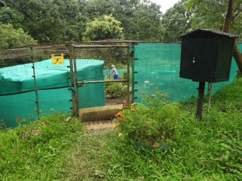 Solar garden at Skambha Estate