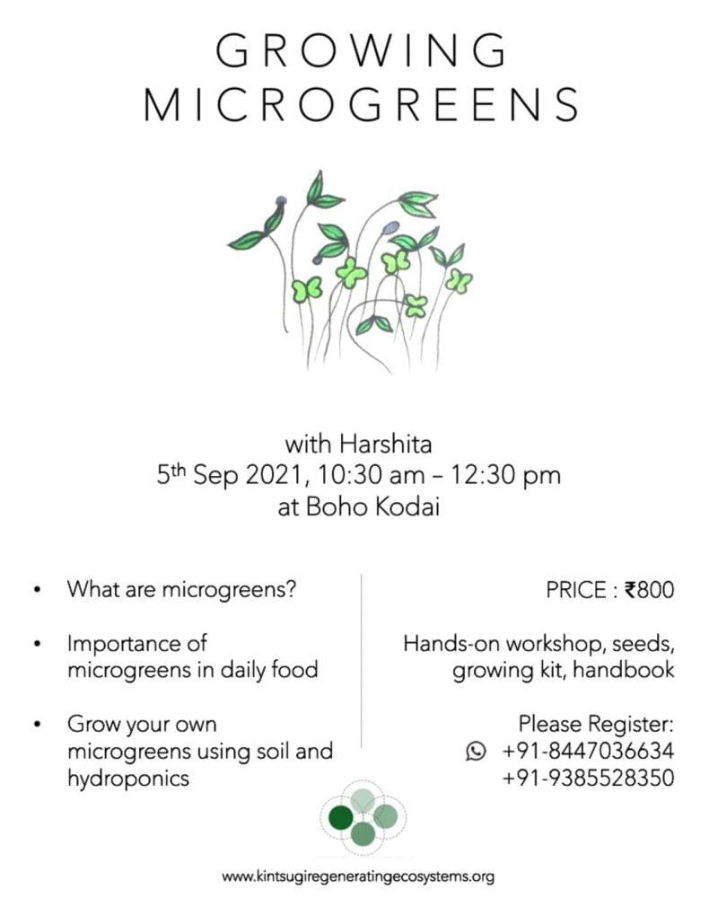 Growing Microgreens workshop