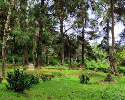 The Graveyard Shift- A Love Letter to a Kodai Cemetery