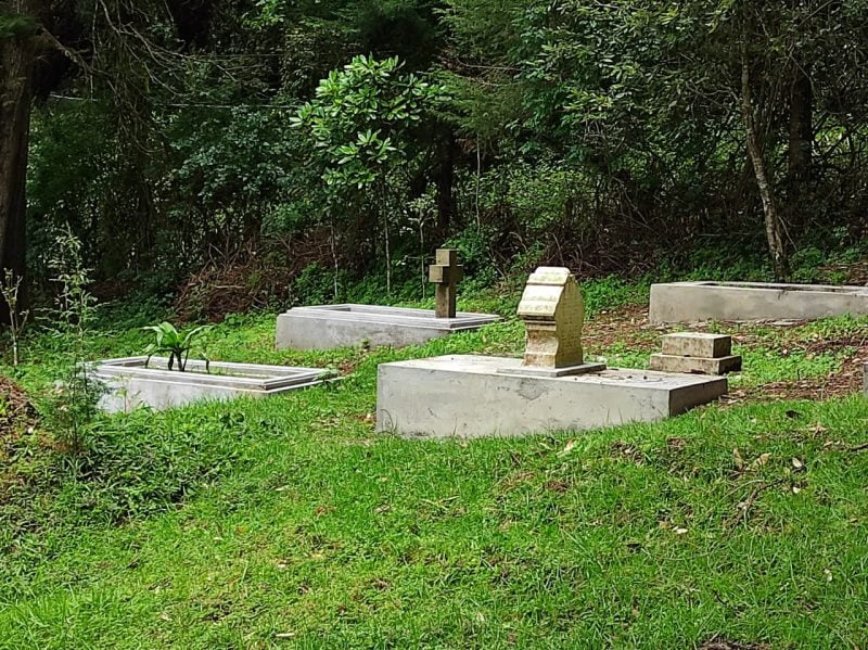 A view of graves near the road