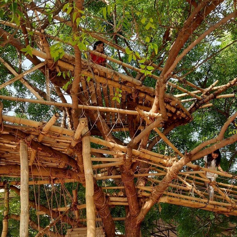 kids up a treehouse