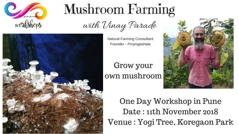 mushroom workshop poster