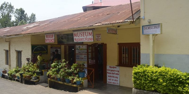 The Shenbaganur Museum of Natural History
